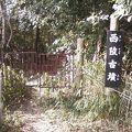 写真:西陵古墳