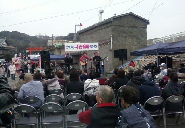 加太の桜鯛祭り