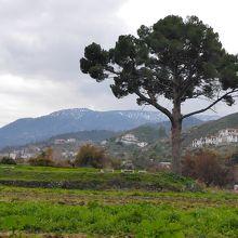トロードスの山が見える