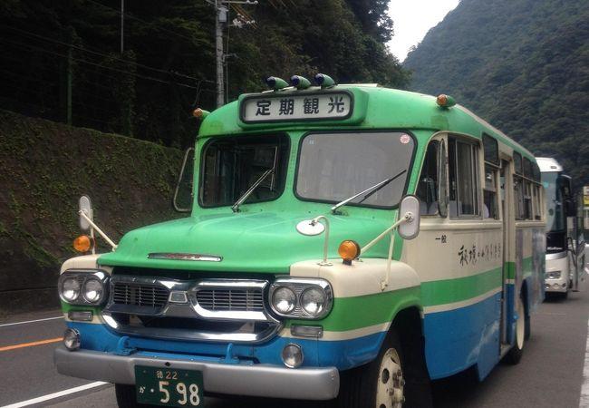 ボンネットバスツアー 大歩危 祖谷 秘境の旅