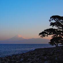 松+駿河湾+富士山