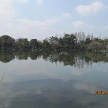 島の中はほとんど池です。