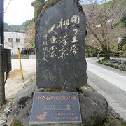 日本の桜名所100選にも選ばれている桜の名所