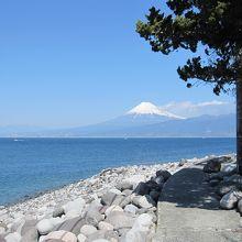伊豆で富士山を見るなら、外せません。