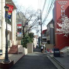 代官山駅をアドレス側に降りて八幡通りを右側に歩いた小路の桜