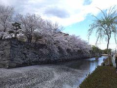 徳島市のツアー