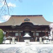 重要文化財も多数あるお寺を中心とした公園 藤だけでなく桜もきれいです