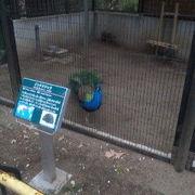 入場無料の動物園