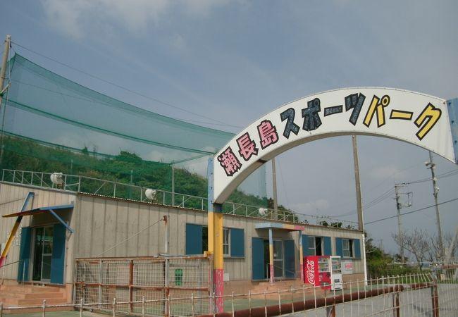 バッティングセンターとゲームセンターがある