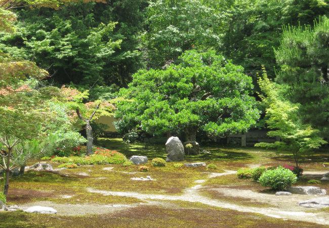 枯山水の平庭