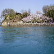 能島の花見
