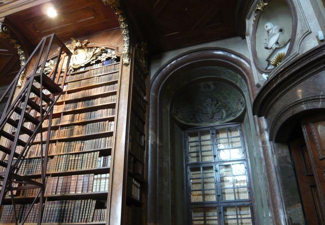 本を探すのに登る梯子が左に見える