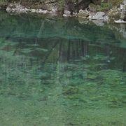 綺麗な川と新緑がステキ
