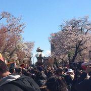 春の犬山祭り