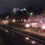 夜桜も楽しめます。
