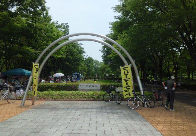 県営朝宮公園