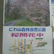 桜の季節が特にお勧めです