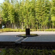 瞑想回廊からの竹林の眺め。