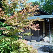 市民茶室「涛々庵」小間ともみじ。京都の光悦寺みたいな景観。