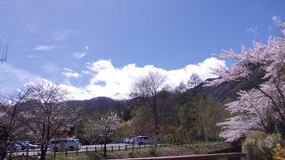 桜と冠雪の乗鞍岳の絶景