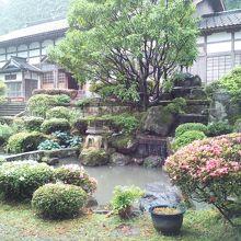 本堂前の池です。裏に大きな池があります。