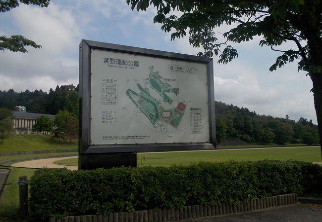 丘の上にある宮野運動公園