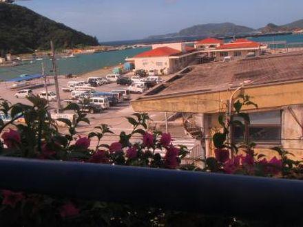 ダイブイン浜 (ダイブイン ハマ) <座間味島> 写真