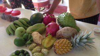 果物を栽培している農場にも寄っていきました