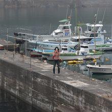 漁港ですので船がいます。