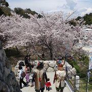 春祭り二日目