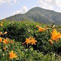 角館から行ける秋田県の山薬師岳、和賀岳