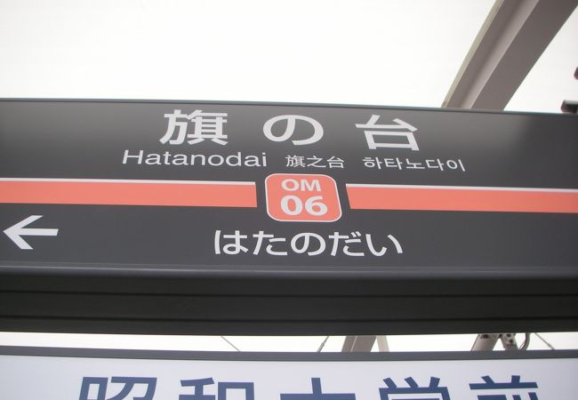 大井町線の急行駅