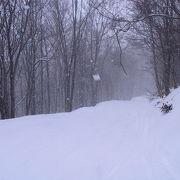 雪の降り始めが遅い