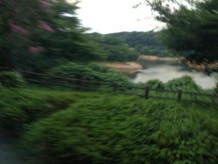 緑水園 写真