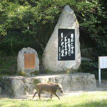 道真公の歌碑とイノシシ