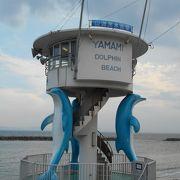 3匹のドルフィンタワーが目を引く南知多の海水浴場
