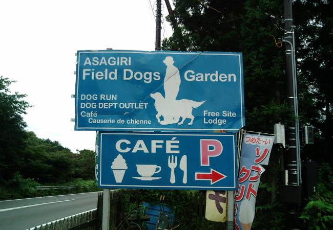 緑のドッグランで、人も犬ものびのび。