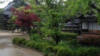 静かなお寺