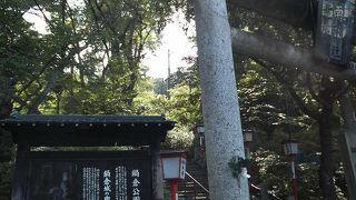 鍋倉城のあった場所で見晴らし・花見によし