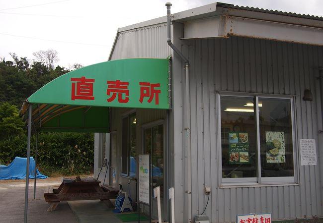 勝山シークワーサー