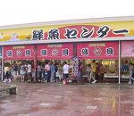磯貝鮮魚店 (マリンドリーム鮮魚センター)