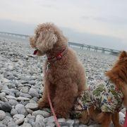 大理石をしきつめたマーブルビーチ