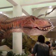 恐竜に出会える博物館