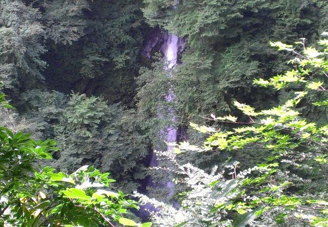 矢筈ヶ山登山道にある滝