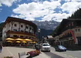 Hotel Des Alpes 写真