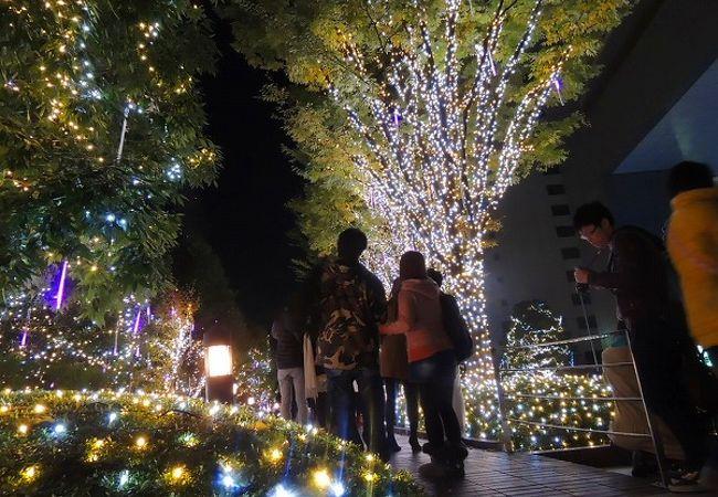SHINJUKU サザンライツ in タカシマヤタイムズスクエア