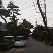 かつての木々の名残も「旧東海道松並木」~大磯~