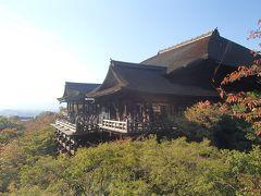 京都のツアー