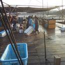 海の釣堀 海恵