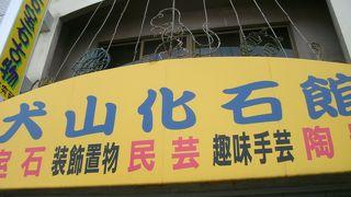 犬山化石館
